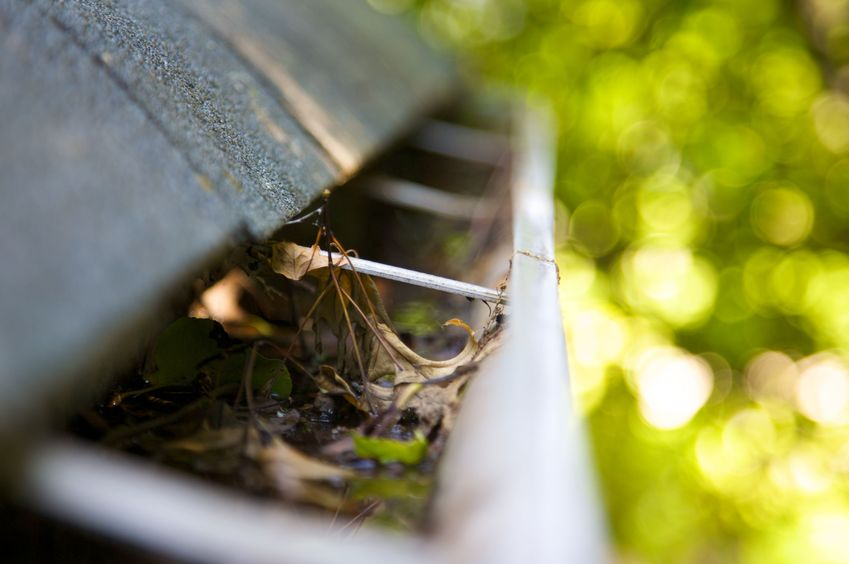 roof gutter cleaning san antonio